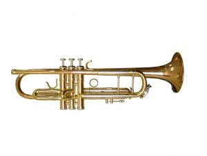 Trumpet Lessons Raleigh NC